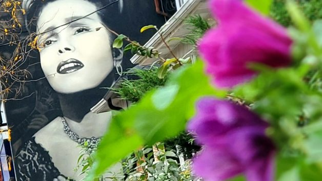 Amália Rodrigues, Queen of Fado immortalized in Little Portugal